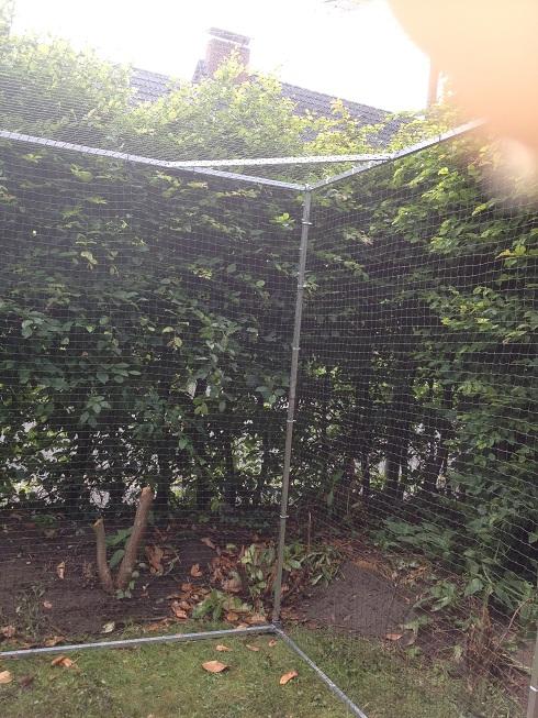 Garten Katzensicher mit Katzennetz oben geschlossen