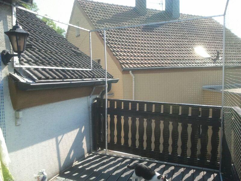 Dach und Rinne mit Katzennetz gesichert