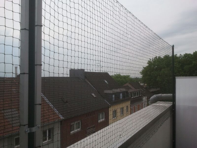 Katzennetz Balkon Oberhausen