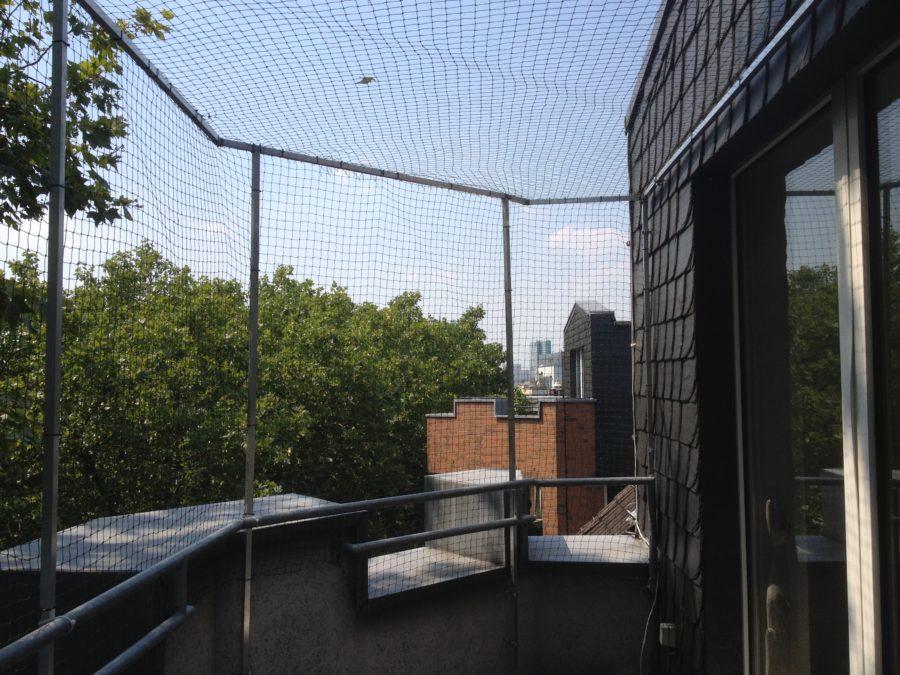 katzennetz f r balkon in d sseldorf angebracht. Black Bedroom Furniture Sets. Home Design Ideas
