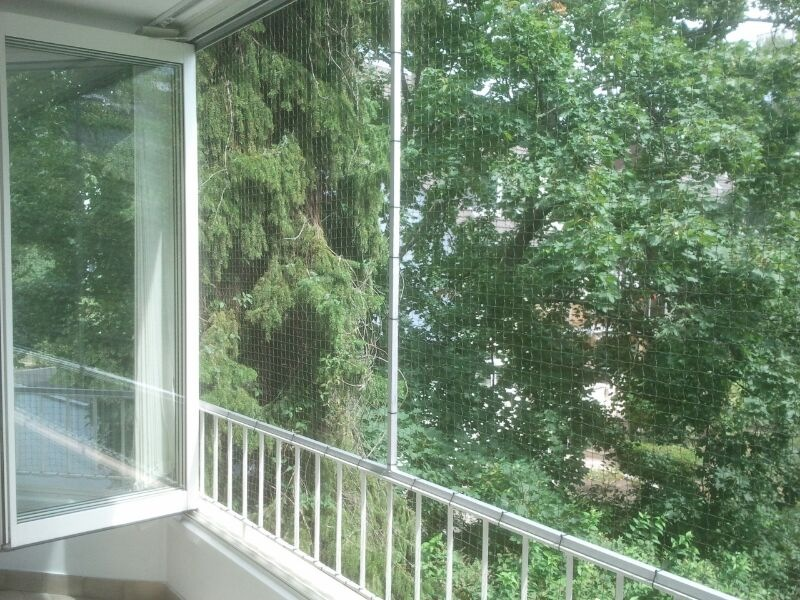 fenster mit katzennetz in d sseldorf abgesichert. Black Bedroom Furniture Sets. Home Design Ideas