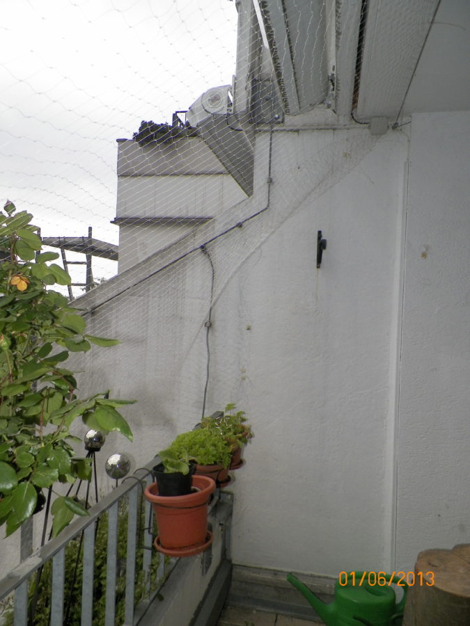nicht gut katzennetz transparent