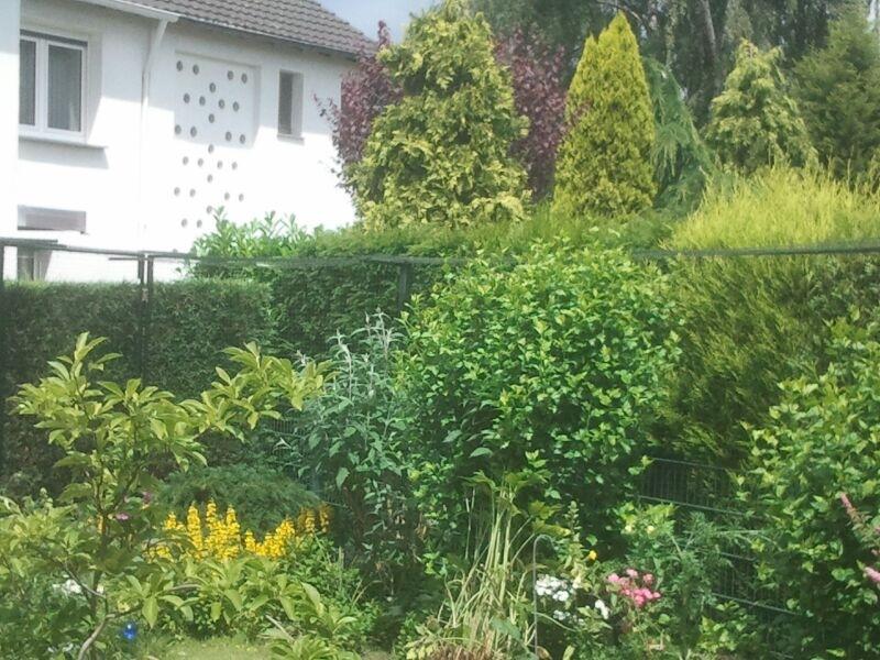 Katzennetz System im Garten
