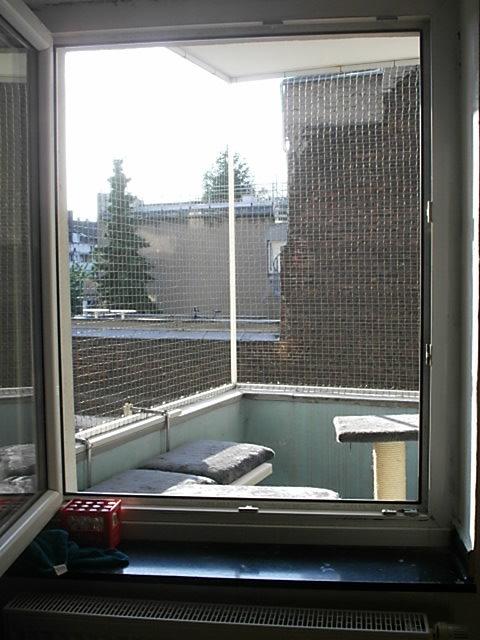 Düsseldorf Katzennetze-NRW