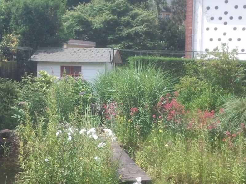 Gartenhaus katzensicher gestalltet