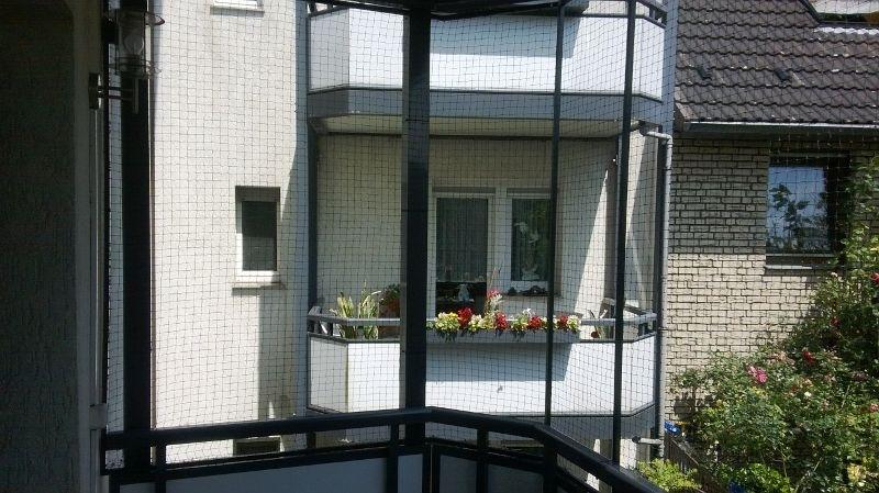 Katzennetz Balkon Befestigen Ohne Bohren : Katzennetz f?r balkon ohne ...