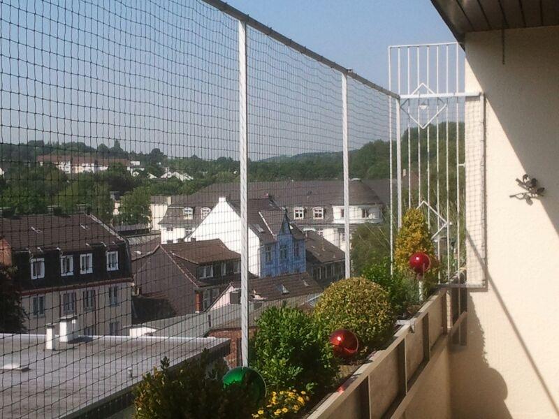 katzennetz ohne bohren f r balkon katzennetze nrw. Black Bedroom Furniture Sets. Home Design Ideas