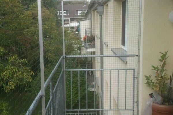 firma für katzennetze in hessen