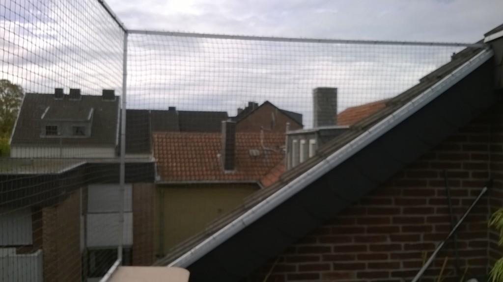 Katzennetz Aachen Balkon