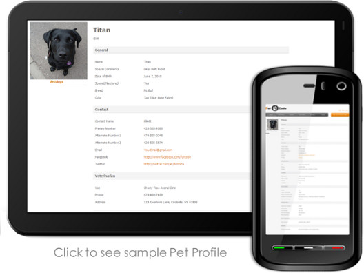 Pet-Tag-with-QR-Code