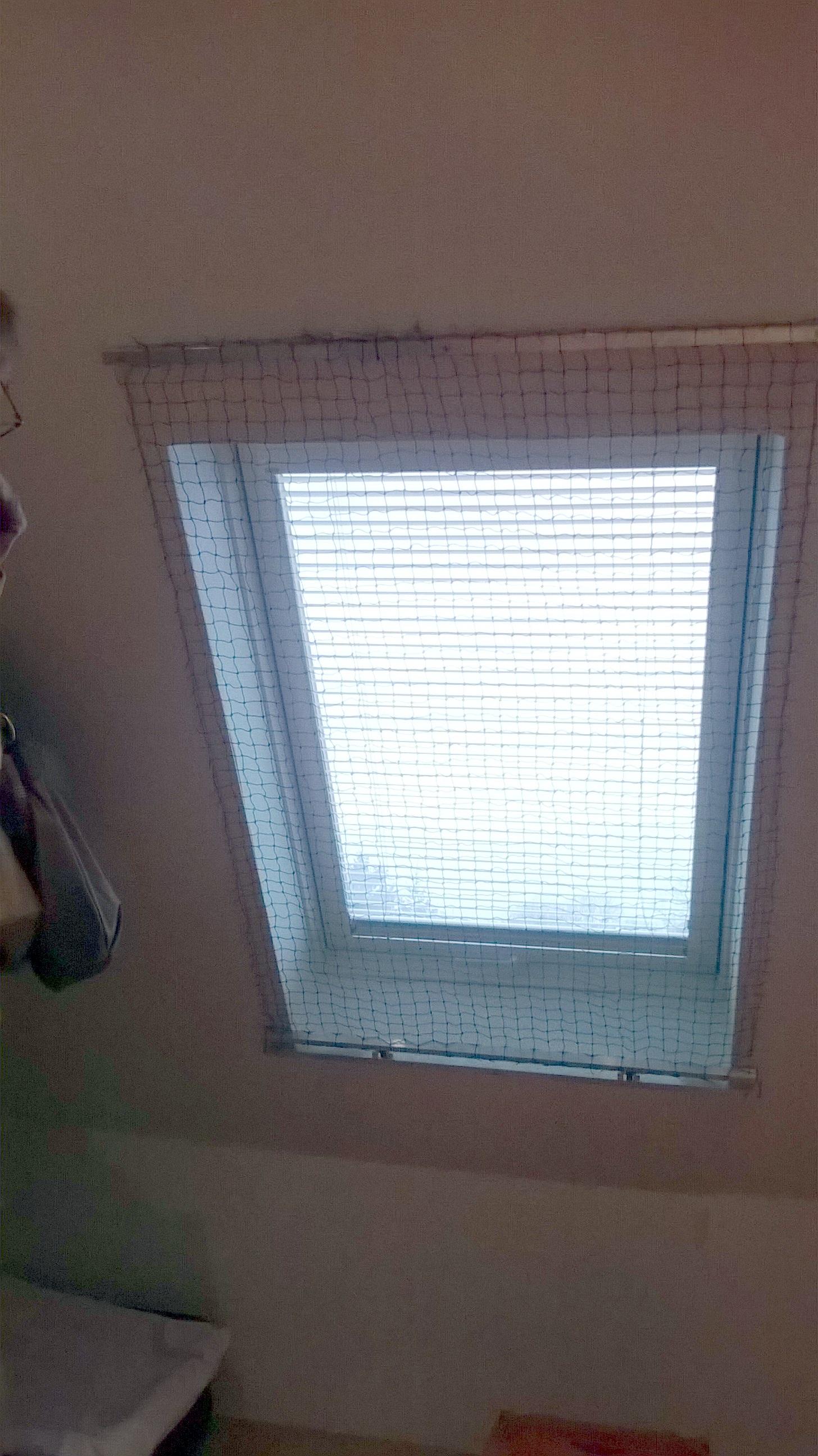 ein katzennetz f r dachfenster das katzennetz als rollo katzennetze nrw. Black Bedroom Furniture Sets. Home Design Ideas