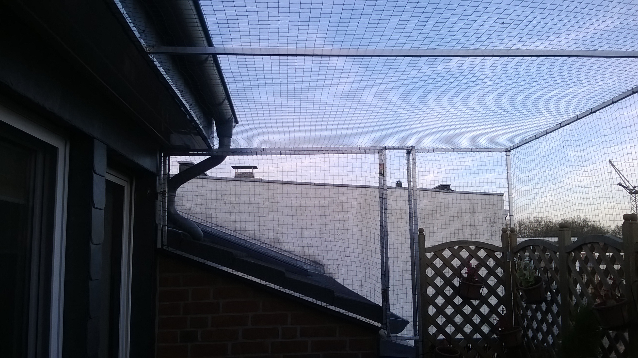 katzennetz zum ffnen auf dachterrasse in langenfeld katzennetze nrw der katzennetz profi. Black Bedroom Furniture Sets. Home Design Ideas