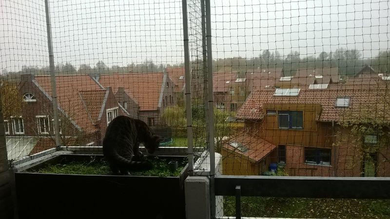 Der vernetzte Balkon in Oldenburg