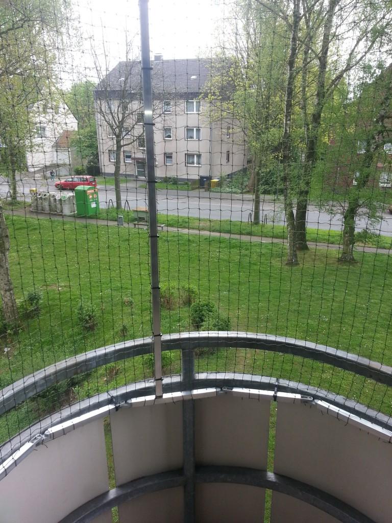 Katzennetz am runden Balkon