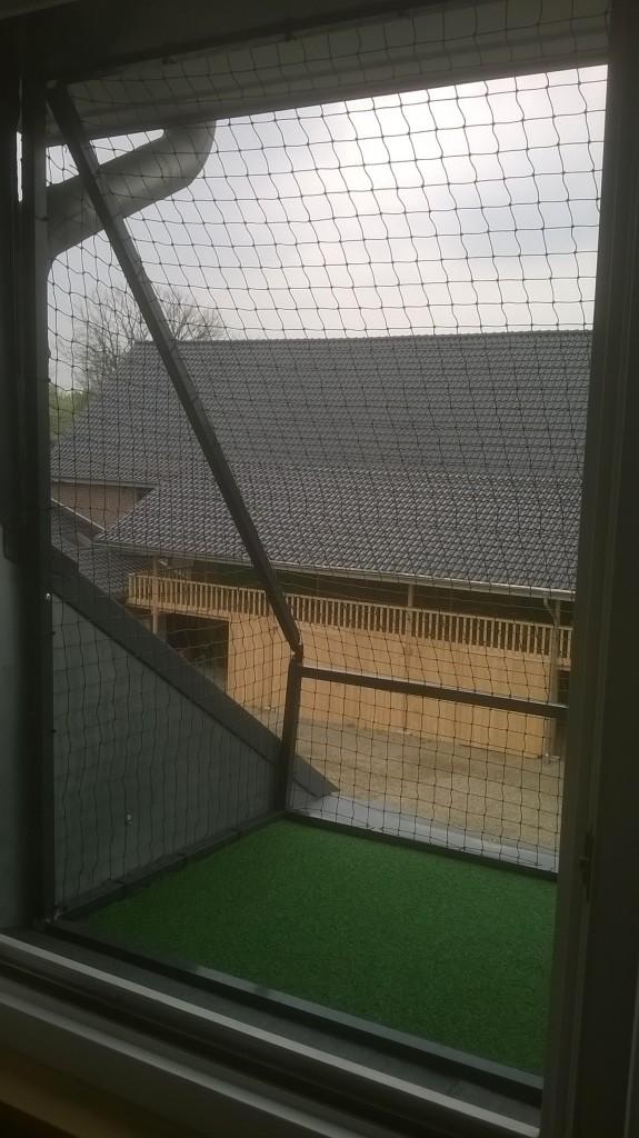 Die Fensterbank als Katzenloggia