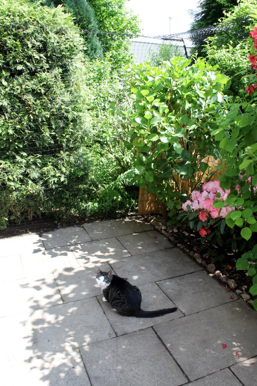 catprotec_Gartenvernetzung