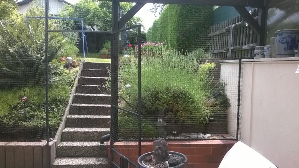 Terrasse als Katzenfreigehege