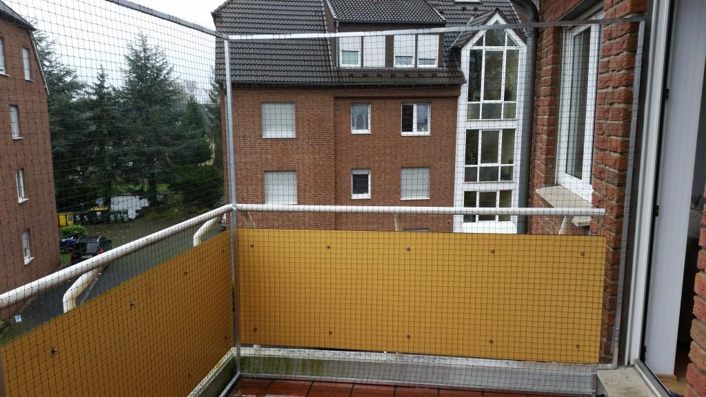 katzennetz am balkon in kamen katzennetze nrw der. Black Bedroom Furniture Sets. Home Design Ideas
