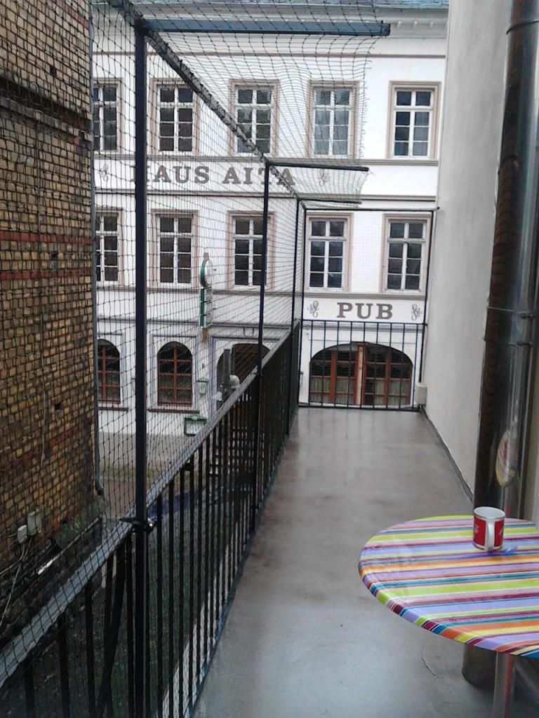 Mainz_Katzennetz