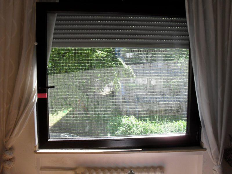 Fenstersicherung Katzennetz