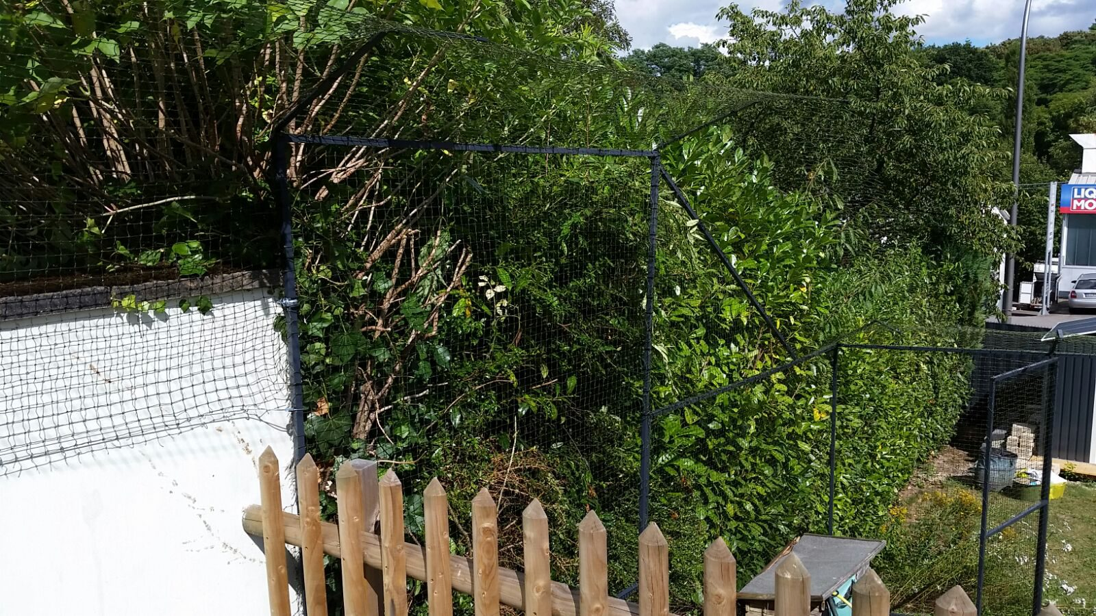 Garten mit Katzennetz System gesichert