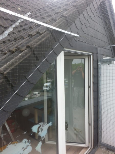 katzennetz f r dachloggia balkon mit dachrand katzennetze nrw der katzennetz profi. Black Bedroom Furniture Sets. Home Design Ideas