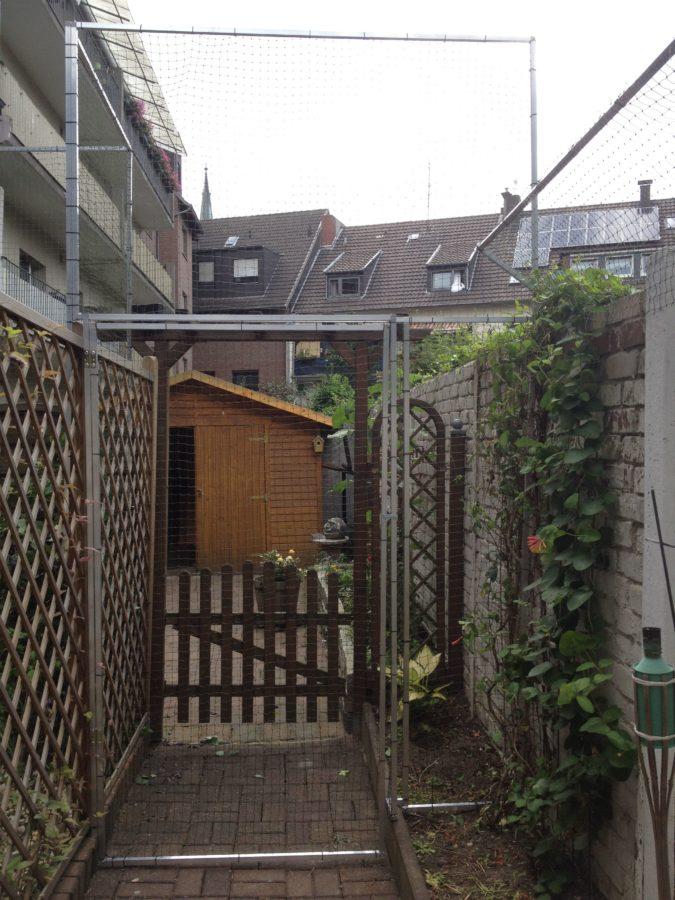 Garten Katzensicher gestalltet