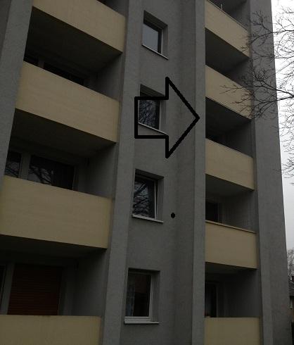 Katzennetz erlaubt in Köln