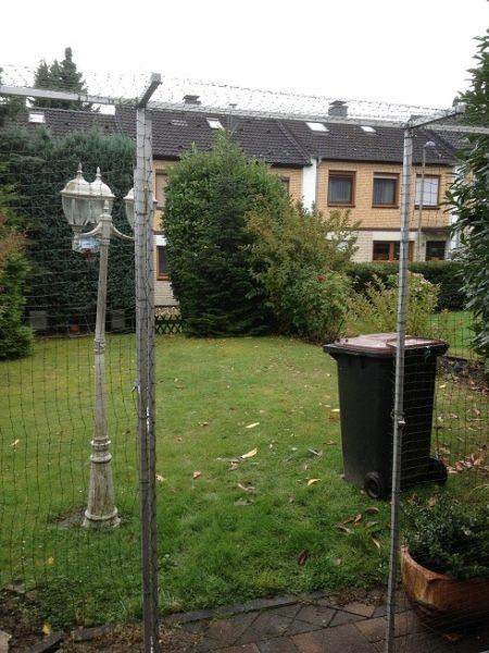 Terrasse:mit_Katzennetz-Tuer