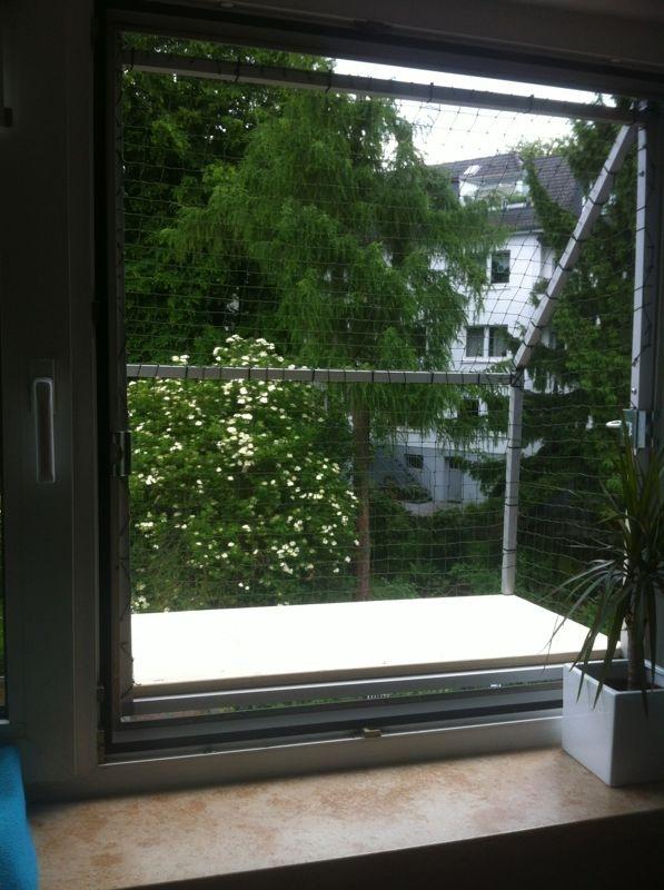 Mobiler Katzenbalkon für Fenster