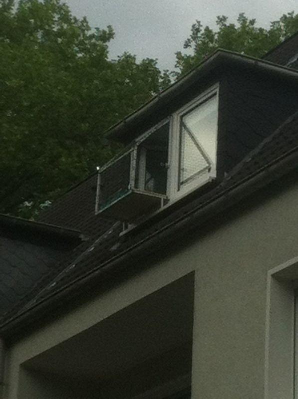 Katzenbalkon für Fenster