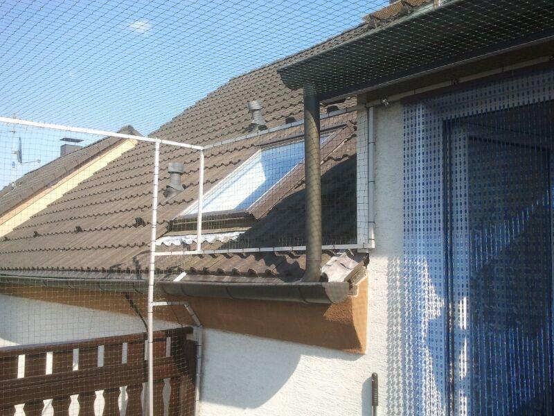 Katzennetz an Dachrinne und Dach