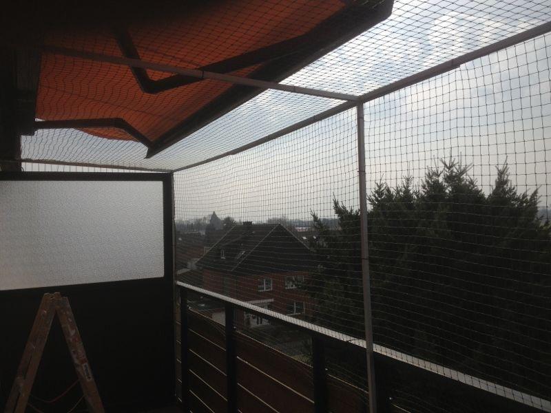 vernetzung an einem balkon mit sonnenschutz katzennetze nrw der katzennetz profi. Black Bedroom Furniture Sets. Home Design Ideas