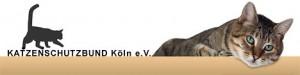 katzenschutzbund Köln_katzennetz