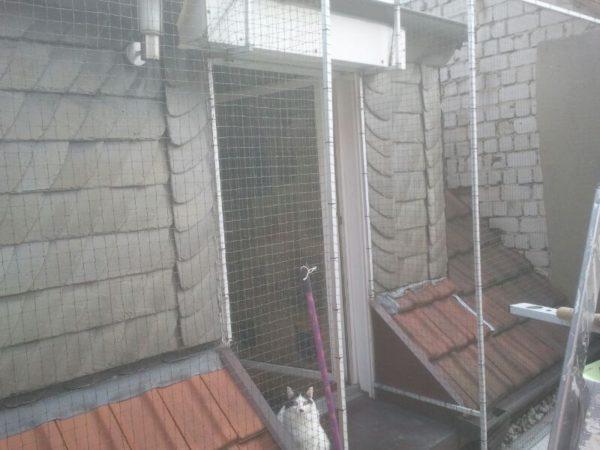 Katzennetz bei Rollade montiert