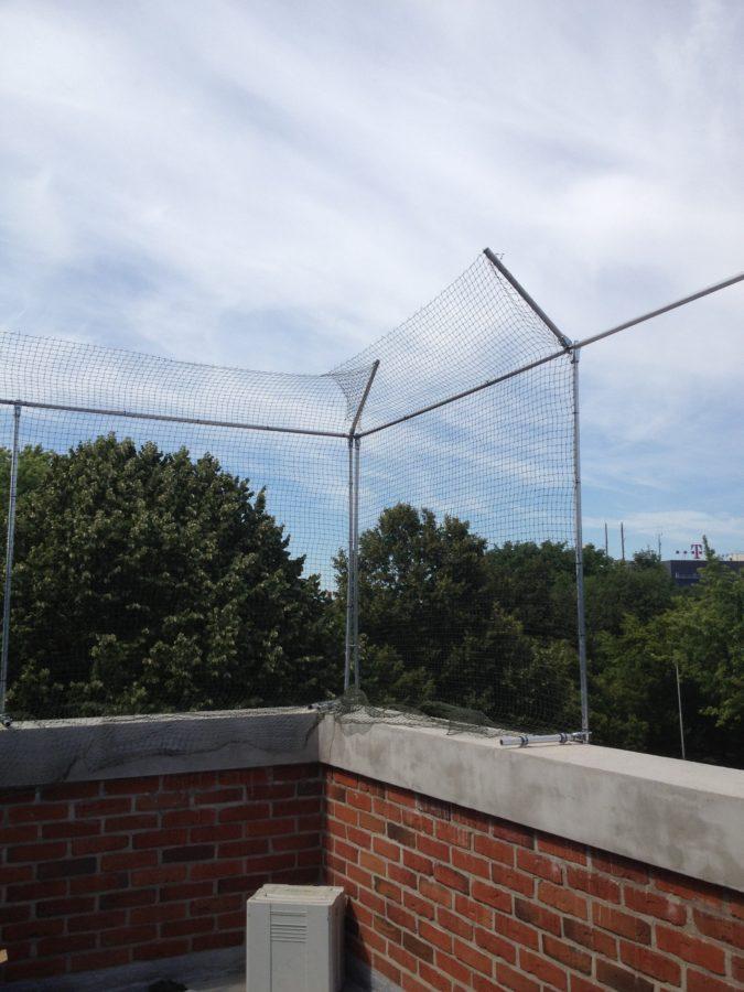 Katzenschutznetz-fuer-Dachterrasse