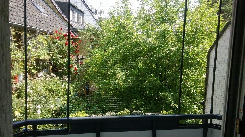 Balkon mit Katzennetz ohne bohren