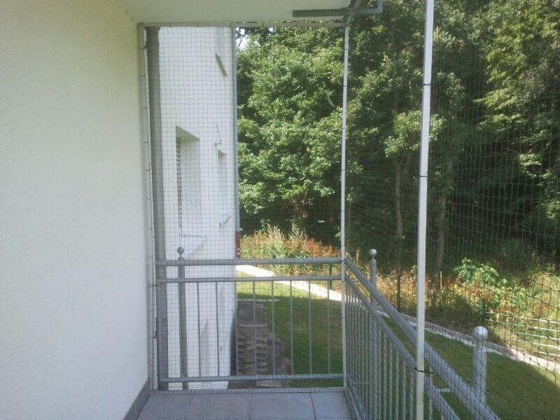 balkon in bonn mit katzennetz gesichert katzennetze nrw der katzennetz profi. Black Bedroom Furniture Sets. Home Design Ideas