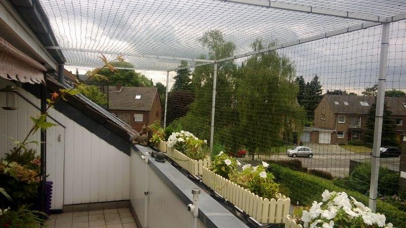 dachloggia in tonisvorst bei krefeld katzensicher vernetzt With katzennetz balkon mit özlem garden side bewertungen