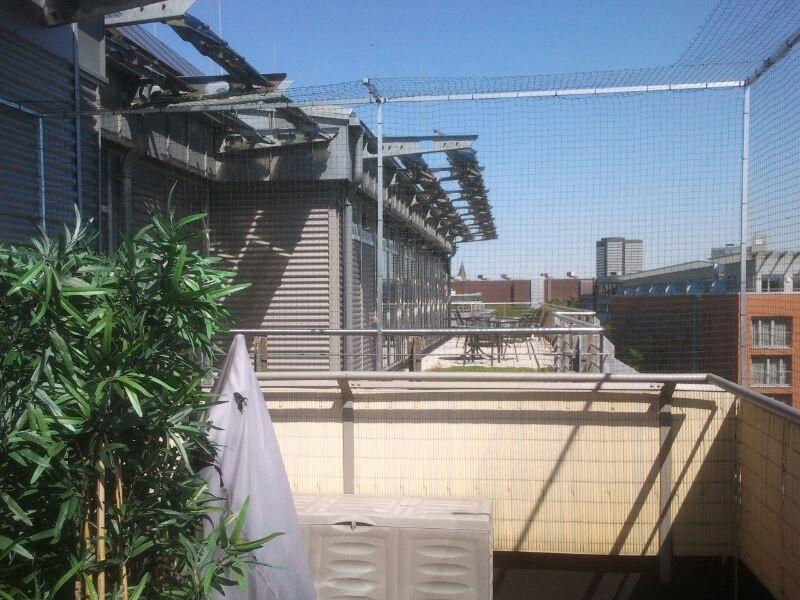 balkonvernetzung balkonnetz f r katzen katzennetze f r balkon katzennetze nrw der. Black Bedroom Furniture Sets. Home Design Ideas