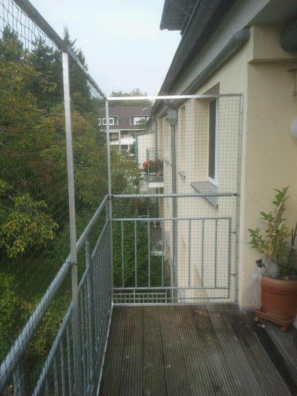 balkon in k ln katzensicher ohne bohren vernetzt katzennetze nrw der katzennetz profi. Black Bedroom Furniture Sets. Home Design Ideas
