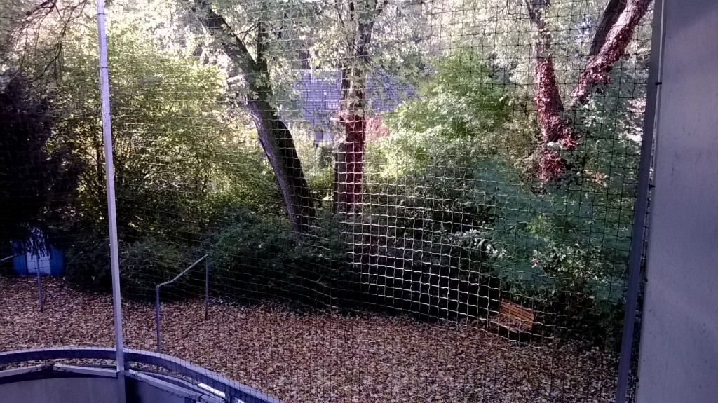 Runden Balkon und Katzennetz