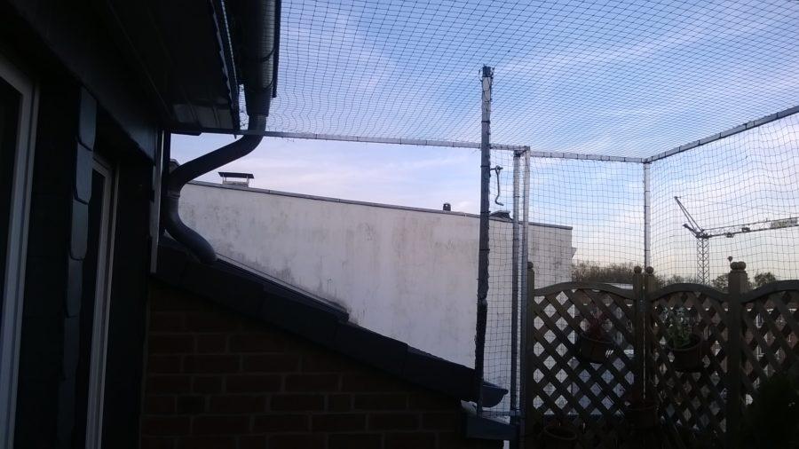 katzennetz Dachzugang