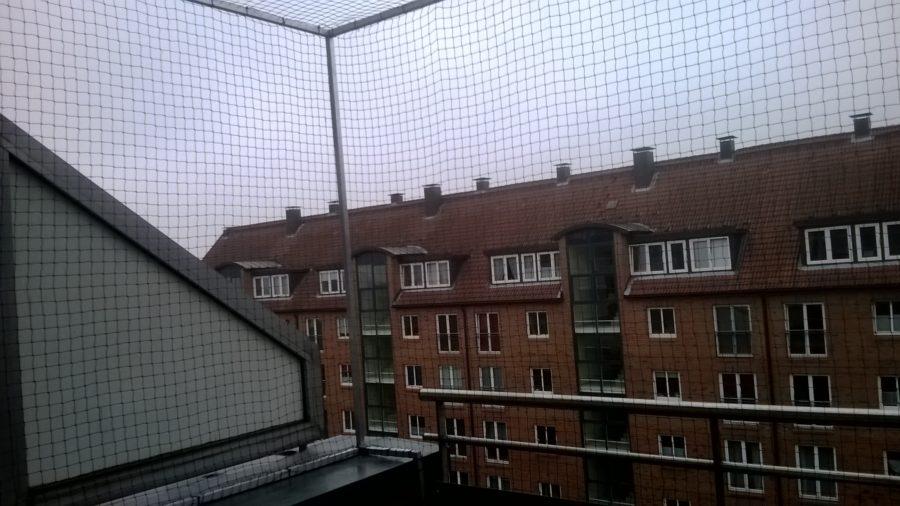 Sicheres Katzennetz für Balkon in Hamburg