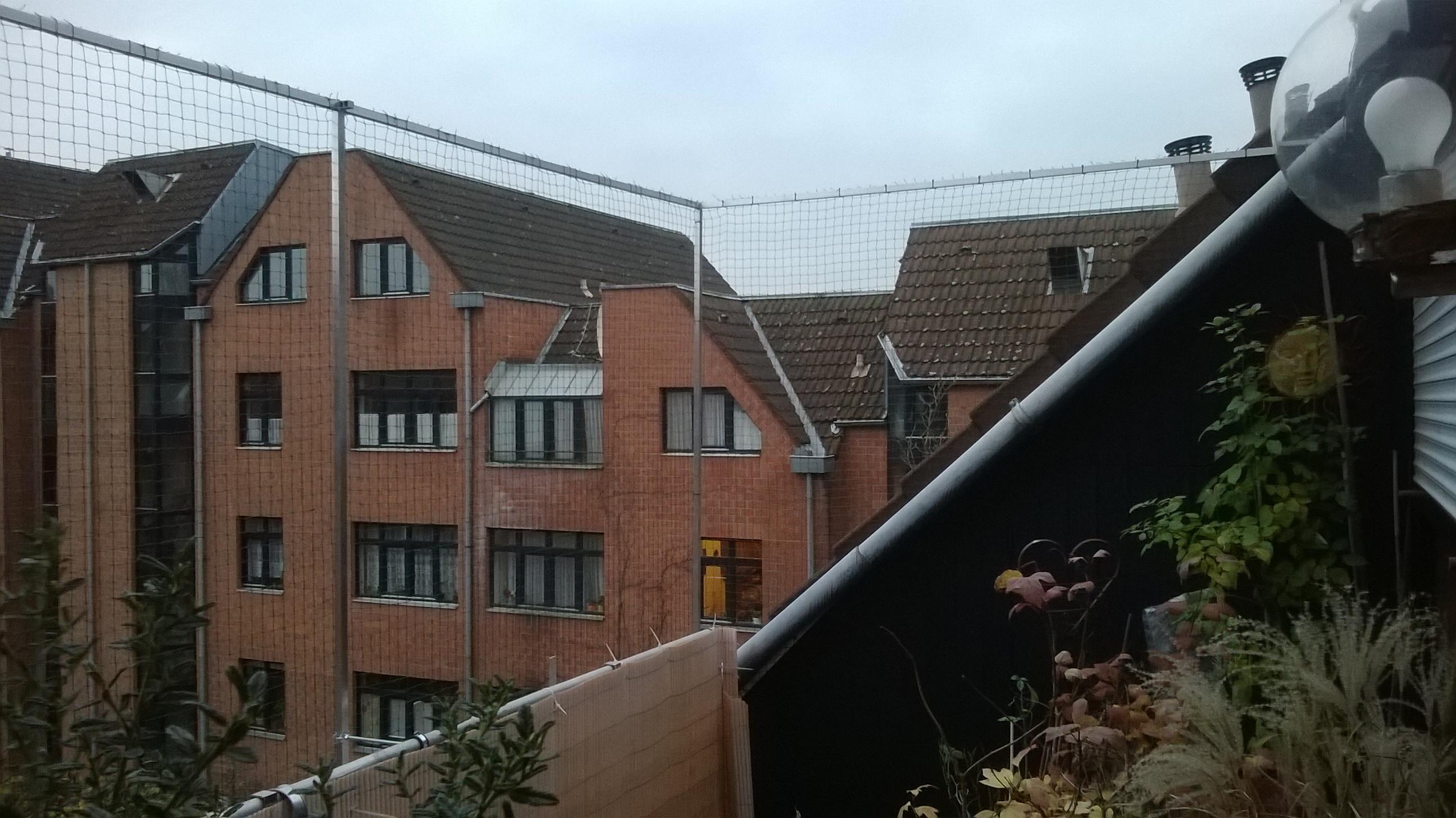 dachloggia balkon in k ln ohne bohren mit katzennetz gesichert katzennetze nrw der. Black Bedroom Furniture Sets. Home Design Ideas