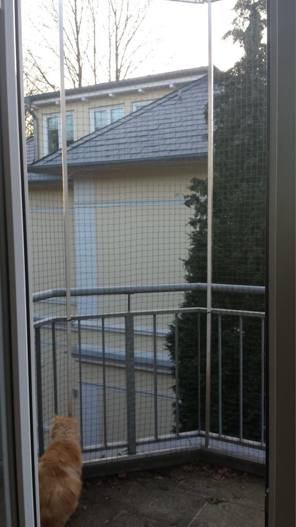 Eckiger Balkon mit Katzennetz