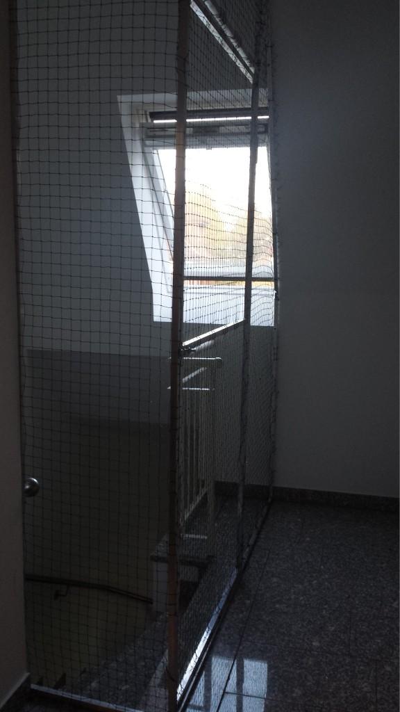 Treppenhaus als Katzenauslauf
