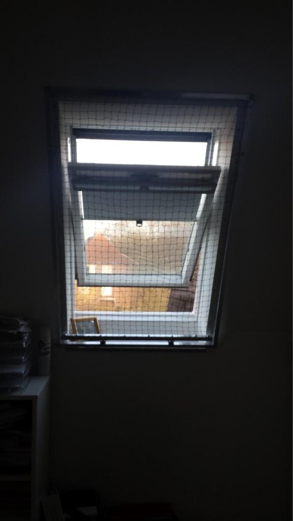Das Katzennetz für Dachfenster. Katzennetz Raff_Rollo ©