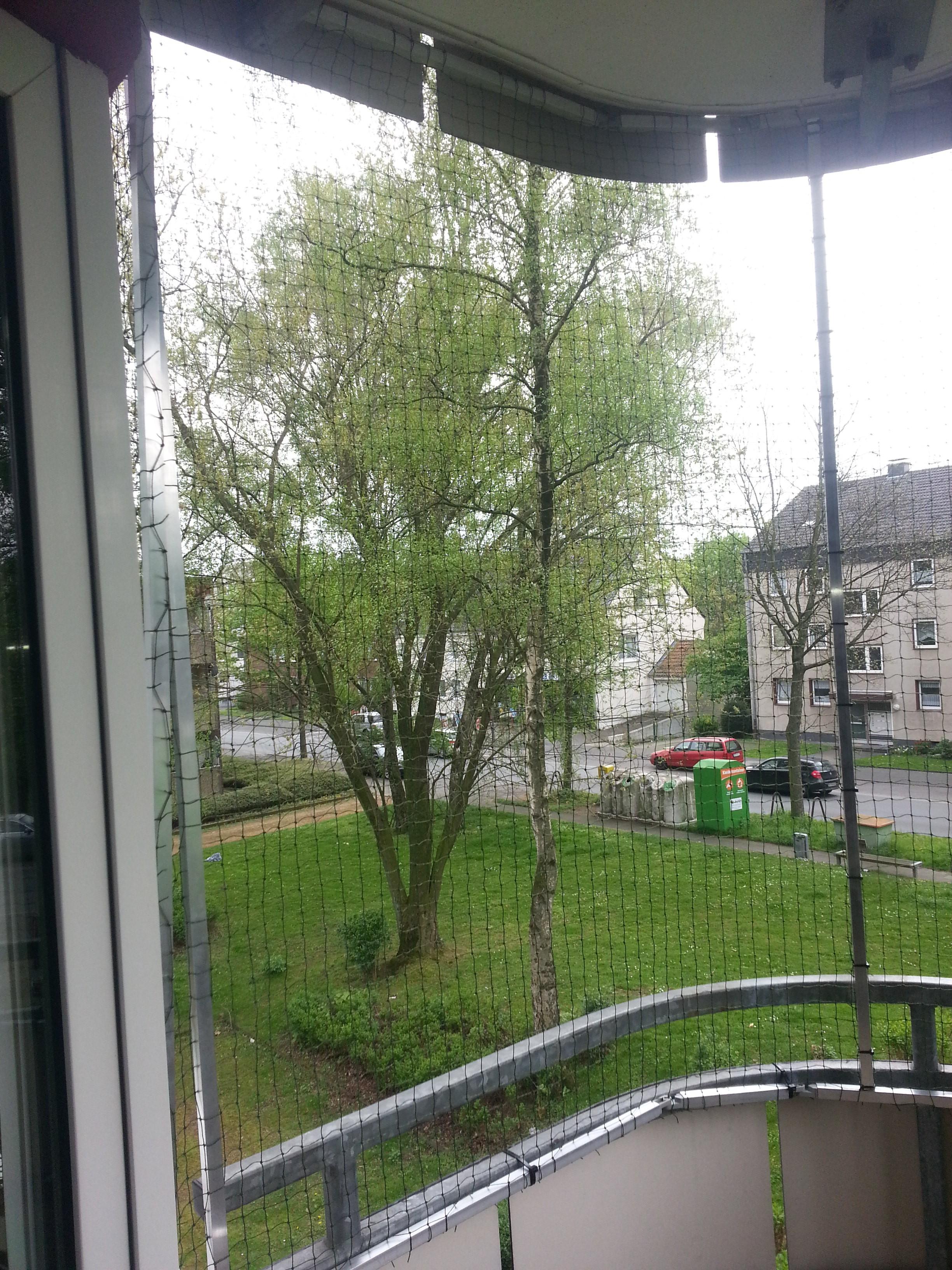 ein runder balkon sicherheit dank katzennetz katzennetze nrw der katzennetz profi. Black Bedroom Furniture Sets. Home Design Ideas