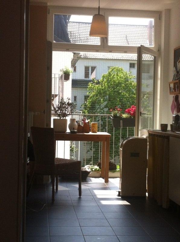 Balkon Terrassentur Mit Katzennetz System Ohne Bohren Gesichert